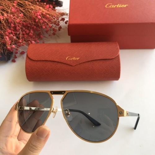 Copy Cartier Sunglasses CT0101S Online CR141