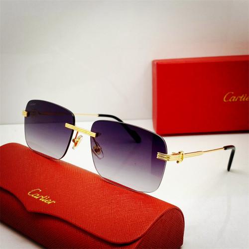 Top sunglasses brands for men Cartier 0271 Replica CR188