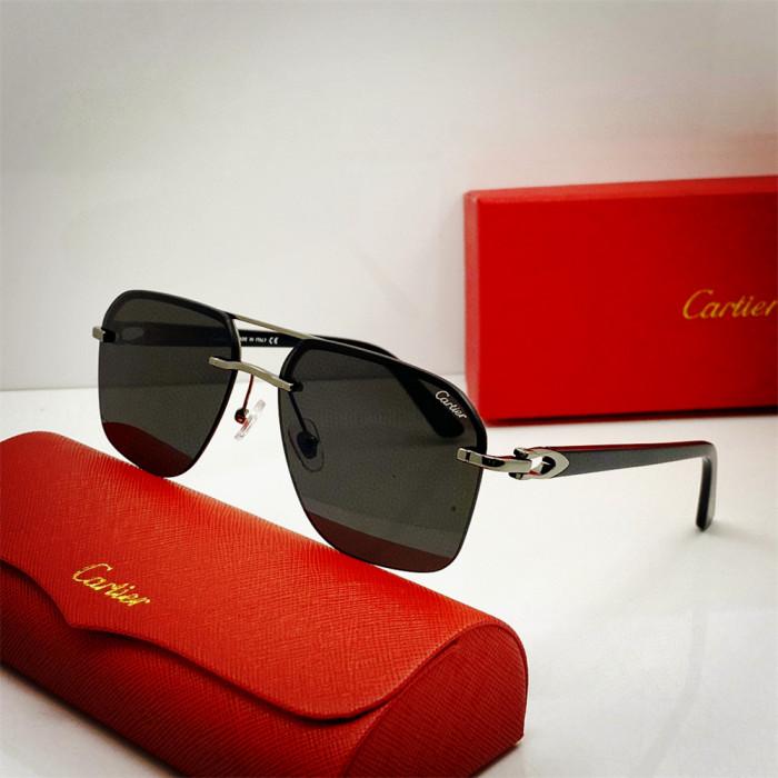 Buy sunglasses brands Cartier 0276 Replica CR189