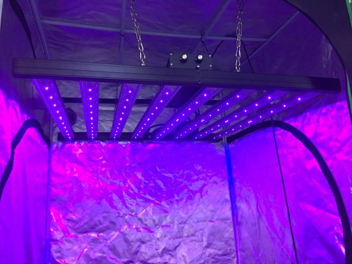 800W 8 bars 5 channels dimming white+red+far red+UV led grow light bar
