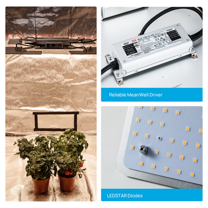 2021 new Foldable expend 300W 2.36 umol/J IP65 waterproof 0-100% dimming quantum grow light for grow tent growbox