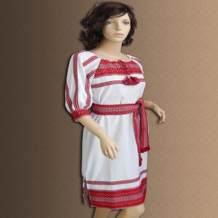 Embroidered women's fashion dress