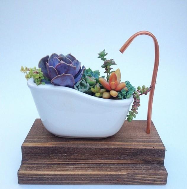 Bathtub meaty flowerpot