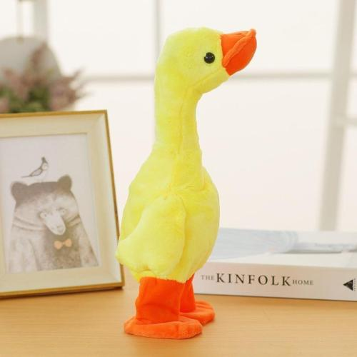 The Talking, Singing And Walking Duck