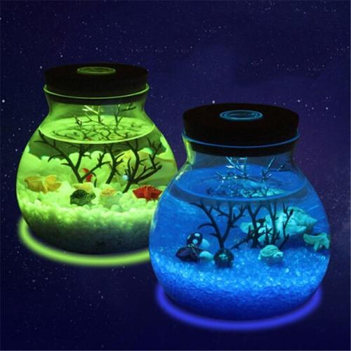 Saltwater Fish Stone Ocean Night Lights