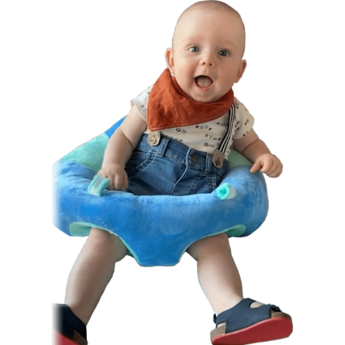 Comfy Baby Lounger Seat