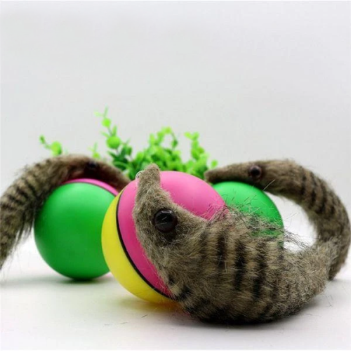 Electric Beaver Ball