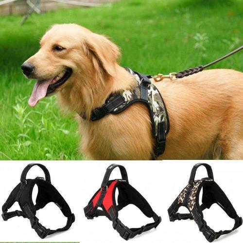 Adjustable Dog Harness With Handle