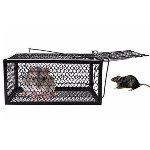 Mouse Killer Rat-Trap