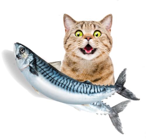 Vibrating Interactive Fish Toy