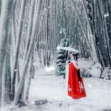 Velvet Cloak Ancient Chinese Style Woolen Autumn Winter Costume